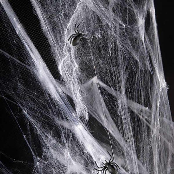 Spinnennetz Deko