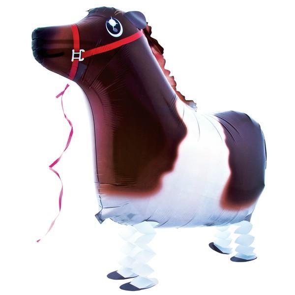 Pony Ballon